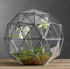 The Fern & Mossery: Geodesic Orchid Terrarium