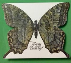 Butterfly Birthday by muscrat - Cards and Paper Crafts at Splitcoaststampers