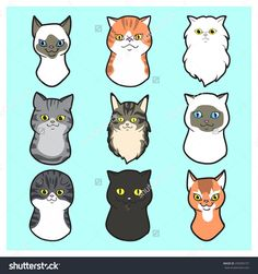 Cute  Cartoon Cats faces set Exotic cat, black cat, siamese cat, scottish fold cat, maine coon cat ,persian cat, american short hair, British Short hair, Japanese Bobtail on field of grass