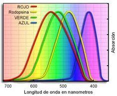 Lenticon Argentina: Test inverso de daltonismo