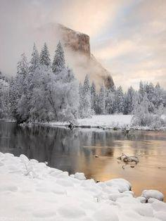 Fresh snowfall in Yosemite National Park California USA