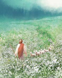 painting leading through flowers christ jesus flock sheep field white of a painting of jesus christ leading a flock of sheep through a field of white flowersYou can find Pictures of christ and more on our website Paintings Of Christ, Jesus Painting, Bad Painting, Catholic Art, Religious Art, Jesus E Maria, Première Communion, Pictures Of Jesus Christ, Jesus Tattoo