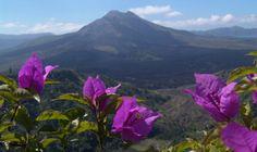 www.villabuddha.com Mt. Kintamani