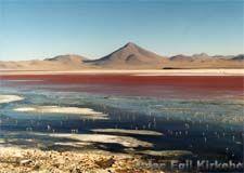 Bolivia: Salar de Uyuni Laguna Colorada