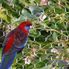 Uncomplicated Bird Control Netting Products - The Basics  https://birdcontrolsydney.wordpress.com/2015/07/21/bird-control-netting/