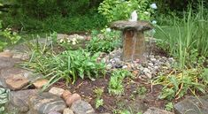 Services Portfolio - Christopher Smith Cape Cod Masonry Christopher Smith, Stacked Stone Walls, Dry Stone, Stone Work, Cape Cod, Curb Appeal, Gardening, Outdoor Decor, Plants