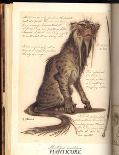 Manticore - Spiderwick Chronicles Wiki