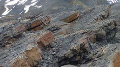 Capitanian rocks in Spitsbergen