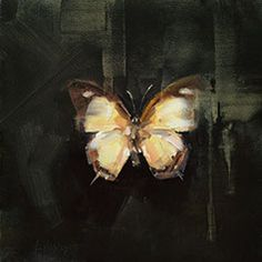 Still Life — Lindsey Kustusch Butterfly Artwork, Butterfly Painting, Butterfly Watercolor, Art Pictures, Photos, Oil Painting Techniques, Wildlife Paintings, Art Poses, Bird Art
