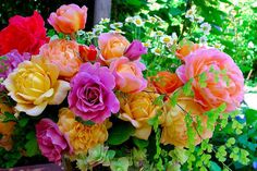Color my Life with flowers :)