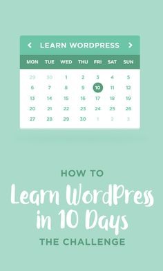 On the Creative Market Blog - How to Learn WordPress in 10 Days: The Challenge
