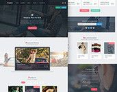 Pakhi e-commerce free psd template