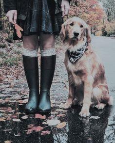 We Are Golden, Knee Boots, Shoes, Fashion, Zapatos, Moda, Shoes Outlet, La Mode, Shoe