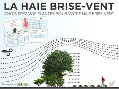 Télécharger notre fiche technique gratuite pour sélectionner vos plantes pour votre haie brise vent. http://www.permaculturedesign.fr/choisissez-vos-plantes-pour-votre-haie-brisevent/