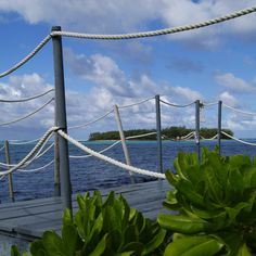 View of Île des deux Cocos from the jetty in Blue Bay. #Mauritius #BlueBay