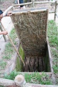 Punji Trap - Cu Chi Tunnels,usually the tips of the bamboo, sharp sticks or whatever where covered with excrement of some sort.  Vietnam.  #VietnamMemories