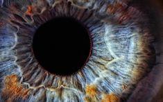 31 Fatos Insanos Sobre Os Olhos http://www.ativando.com.br/curiosidades/31-fatos-insanos-sobre-os-olhos/