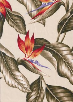 30wali Tropical Hawaiian Vintage bird of paradise flowers, cotton apparel fabric.