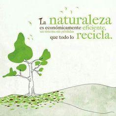 citas sobre medio ambiente