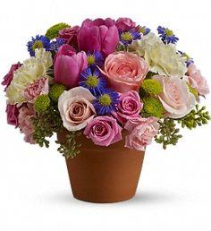 Spring Sonata in JolietIL, Palmer Florist