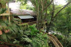 jungle beach hotel overview   - Costa Rica