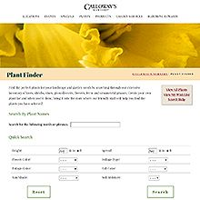 Calloway's Gardening Websites, Plant Catalogs, Plant Needs, Pansies, Evergreen, House Plants, Perennials, Planting Flowers, Succulents