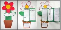 Life Cycle of Plants: includes labs, reading strategies, writing, graphic organizers, observation journals, diagrams, plant vocabulary  cards, anchor charts and culminating foldable project book perfect for assessment. $