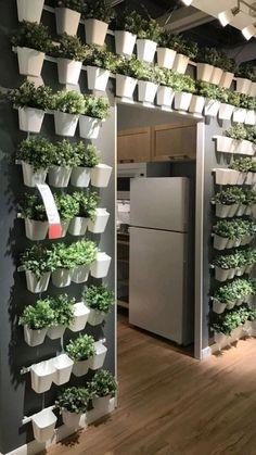 Jardin Vertical Diy, Vertical Garden Diy, Indoor Vegetable Gardening, Indoor Garden, Urban Gardening, Texas Gardening, Container Gardening, Small Balcony Garden, Garden Planters