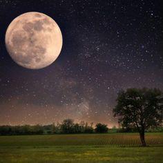 Magische Mondfinsternis Horoskop: Dieser Mond belohnt das Gute