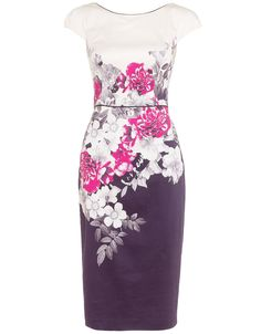 Monsoon Rhonda Rosa Dress