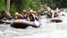 Bali rafting tours for white water rafting - Grab your oars and get ready to rage with this exhilarating rafting adventure on the spectacular Ayung River Bali Activities, Rafting Tour, Bali Travel, Boat, Tours, Adventure, Dinghy, Boats, Adventure Nursery