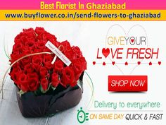 Send fowers to ghaziabad at great price get same day delivery online florist ghaziabad, send flowers to indirapuram, florist in indirapuram send gift to ghaziabad, midnight services available. Fast Flowers, Send Flowers, 24 7 Delivery, Fresh Shop, Online Florist, Valentine Day Special, Gift Cake, Flowers Online, Flower Delivery
