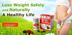 Providing Original 2 Day Diet Japan Lingzhi, bringing satisfying effect for both male and female, slim whole body healthily now with 2 Day Diet pills !