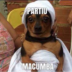 Entidades Ciganas da Umbanda (Clique Aqui) para entrar.: Humor cigano. Partiu macumba English Memes, Orisha, Rock N Roll, Tatoos, Spirituality, Funny Memes, Humor, Cool Stuff, Instagram Posts