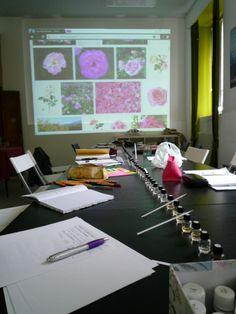 Uno scatto durante la pausa del corso di PsicoAromaterapia e fiori di Bach tenuto a Milano domenica 11 maggio. Il prossimo appuntamento è per domenica 12 ottobre 2014 per il corso di PsicoAromaterapia, Chakra e Colore!