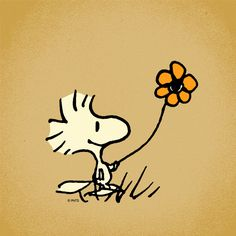Woodstock with flower