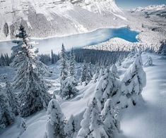 Canada's Best Spots for Winter Photography Winter Szenen, Winter Cabin, Winter Time, Winter Season, London Photography, Winter Photography, Nature Pictures, Cool Pictures, Snowy Pictures