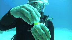 egg under water wat