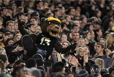 Last year's #EveryoneInBlack game against OU. (Click through for pics) // This year's should be 10 times as fun!