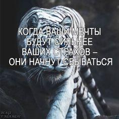 #мотивация #успех #деньги #цитата #афоризма #цельжизни