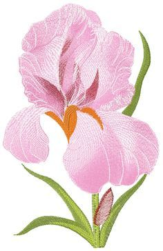 Iris Flower Free Embroidery Flowers Free Machine Embroidery Designs Sewing Embroidery Designs Flower Machine Embroidery Designs Machine Embroidery Patterns