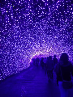 Tunnel of Light:  Nabana-no-Sato Park, Kuwana, Mie, Japan なばなの里
