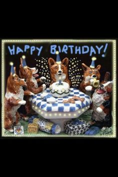 Pin by benita west on b day cards for fb pinterest birthday sheltie birthday greetings corgis welsh october anniversary greetings welsh language birthday congratulations corgi m4hsunfo Images