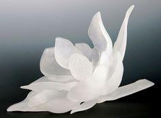 Magnolia Feature