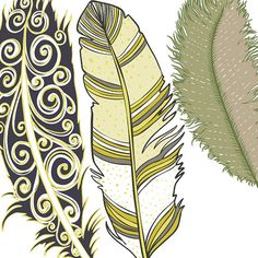 Feather Clip Art Yellow Blue Tan & Green Masculine