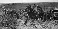 A mule team, hauling a U.S. ammunition wagon, is holding up the advance of a mixed animal and motor column, east of St. Mihiel, France, 13 September 1918.    In many ways World War I resembled all past wars. Cavalry horses and pack animals were used in large numbers. For perspective, during the war, Great Britain shipped 5,253,538 tons of ammunition to France. But the greatest single item shipped was 5,438,602 tons of oats and hay, augmented by local forage.