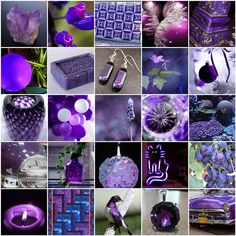 All sizes | Purple play - some favorite purple photos | Flickr - Photo Sharing!