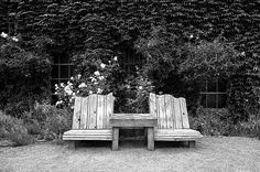 a couple of wooden chairs in an overgrown garden #garden #chairs #furniture #blackandwhite #weathered  #home #outdoors #ivy