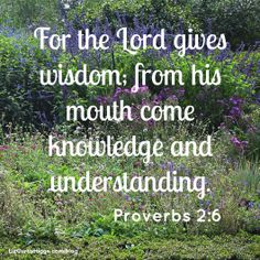 """One of the things I learned from Proverbs """"Knowledge is power, all right—the power of God, the One who knows everything. Encouragement Quotes, Bible Quotes, Words Quotes, Bible Verses, Scriptures, Sayings, Book Of Proverbs, Proverbs Verses, Memory Verse"""