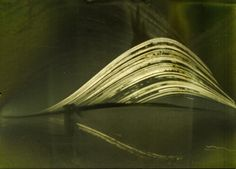 Pinhole Camera, Thing 1, Abstract, Artwork, Work Of Art